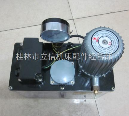 自动油泵304G